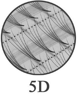120 Ciglia Flare 5D ultra leggere - senza nodo - diametri 0,07 mm, 0,12 mm e 0,15 mm